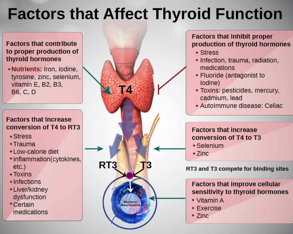thyroiditis 5