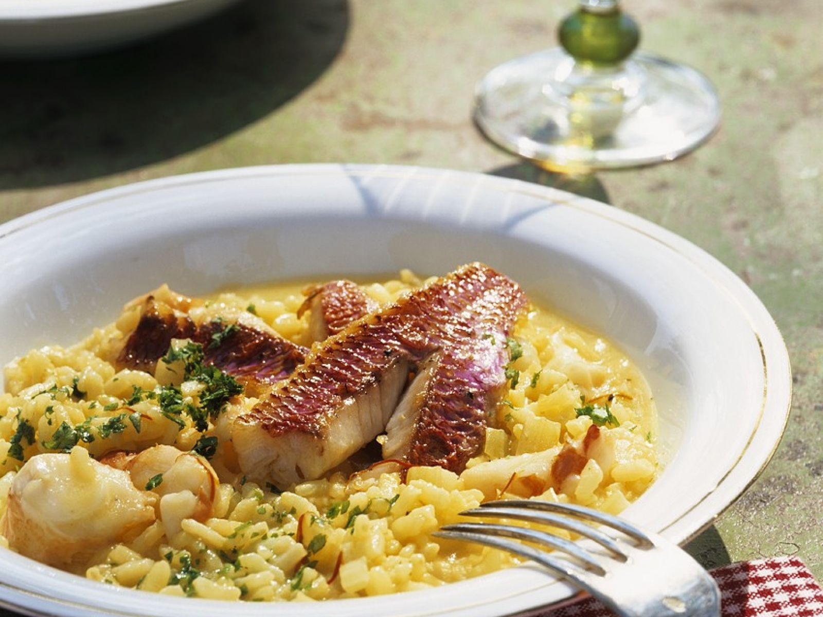 seafood risotto 557826